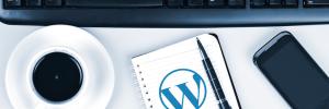 WordPress Site Management San Diego